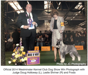 2014 Westminster Dog Show Win