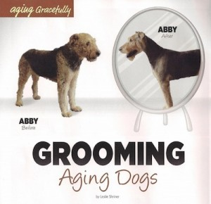 Grooming Aging Dogs by Georjeans Dog Grooming